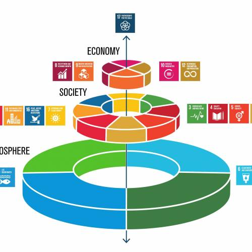 Youth Engagement with Sustainable Development Goals (SDGs)
